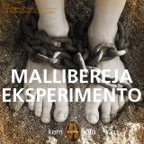 Mallibereja eksperimento