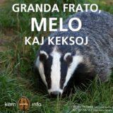 Granda frato – melo – keksoj